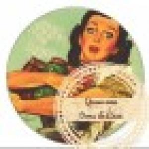 Retrato de Quase uma Dona de Casa