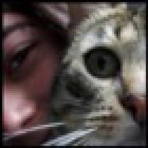 Retrato de Panther