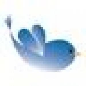 Retrato de andorinha azul